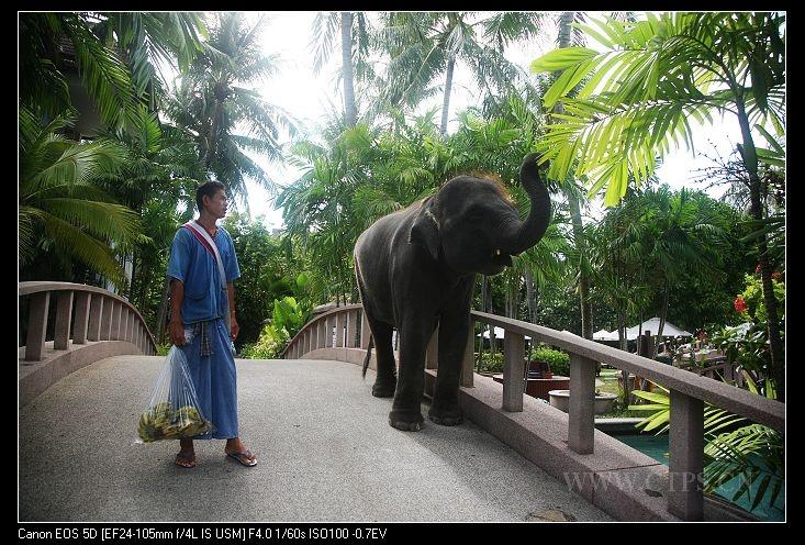 泰国——普吉岛喜来登酒店