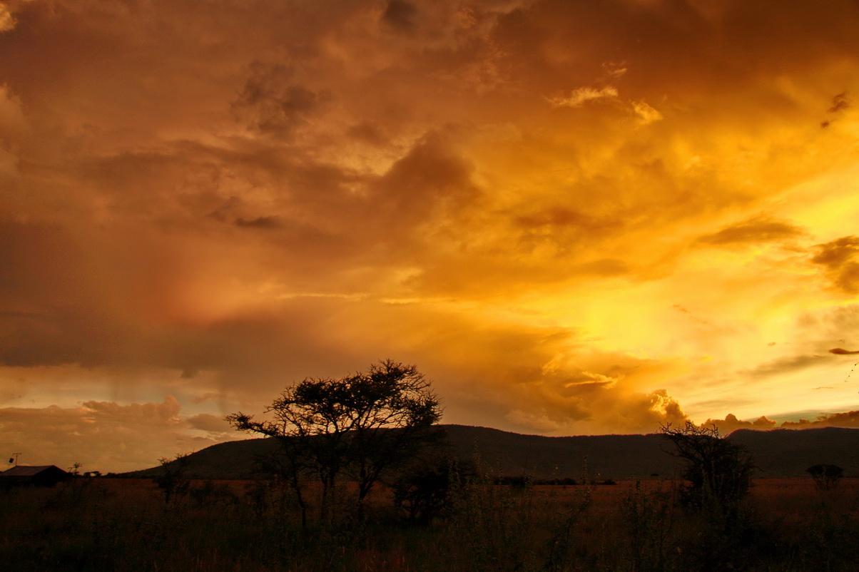 非洲草原------夕阳无限
