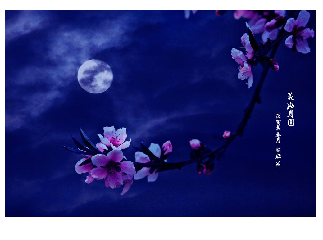 花好月圆 我的中秋节一直是在家里过 公羊羽