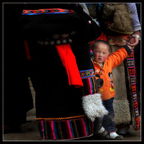 藏袍歌唱解放军简谱