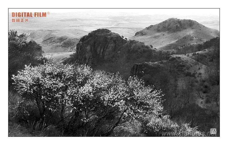 壁纸 风景 国画 750_477