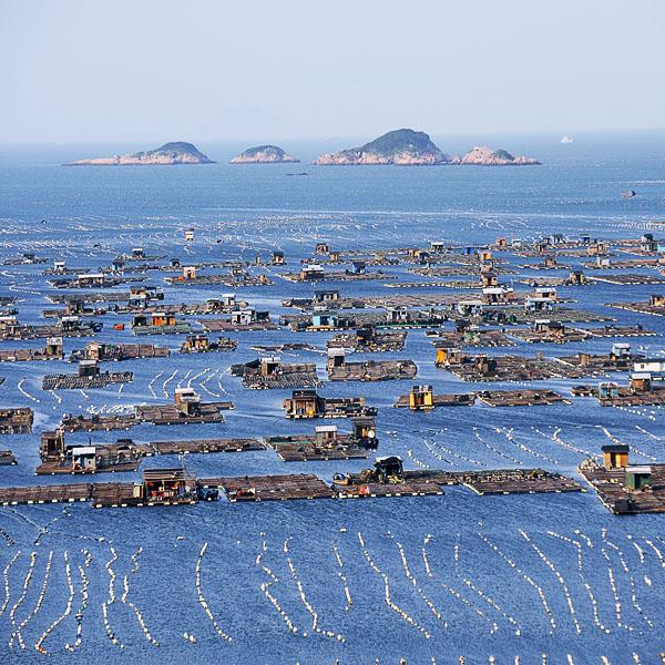 福建海岸线鱼排