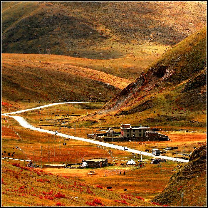 看看川西高原的美丽神秘与壮观【图】 - 柏村休闲居 - 柏村休闲居