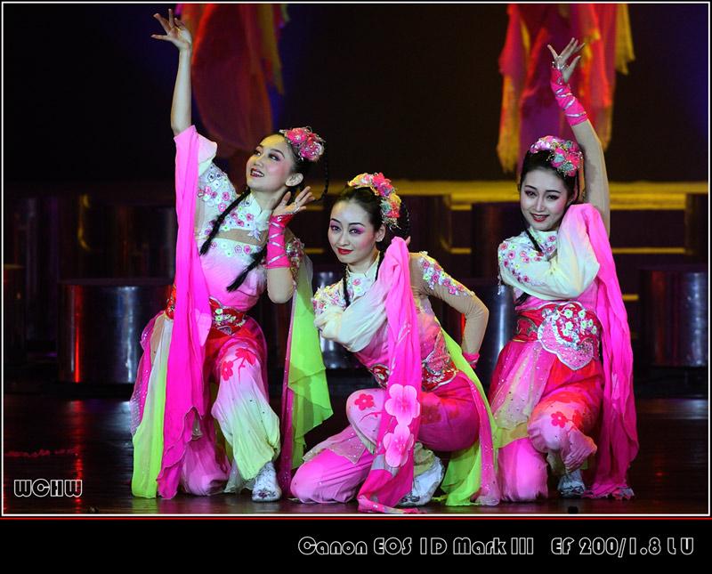 中国东方歌舞团舞蹈《踏梅