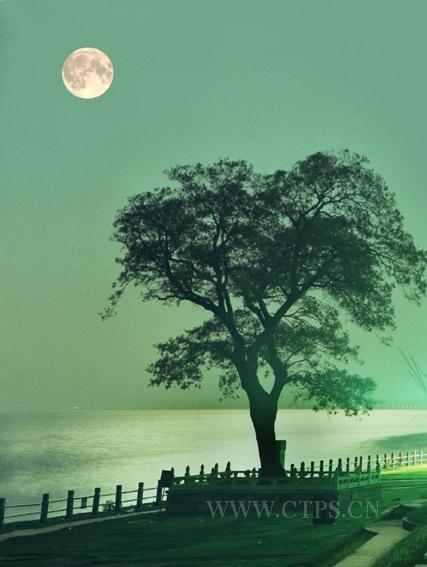 离岛月夜大提琴歌谱