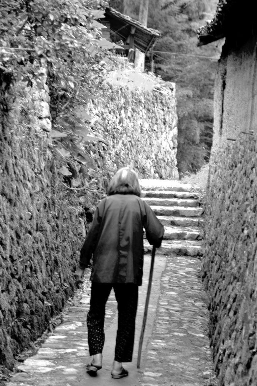 老人孤单背影手绘