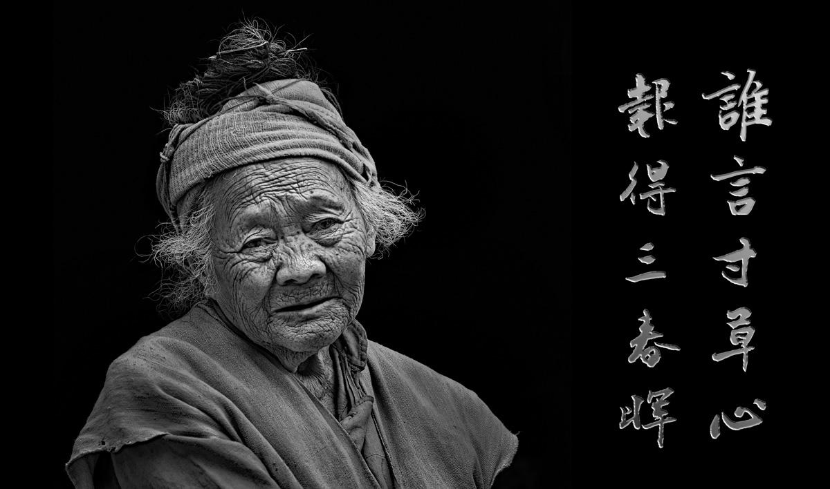 游子吟 - 笔名:柳正 - 郑为(伟)俊(笔名:柳正)原创作品。