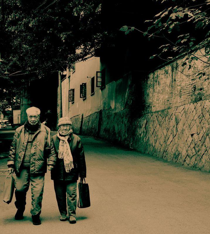 当您老了【朗诵】 - 山野幽兰 - 山野幽兰的博客