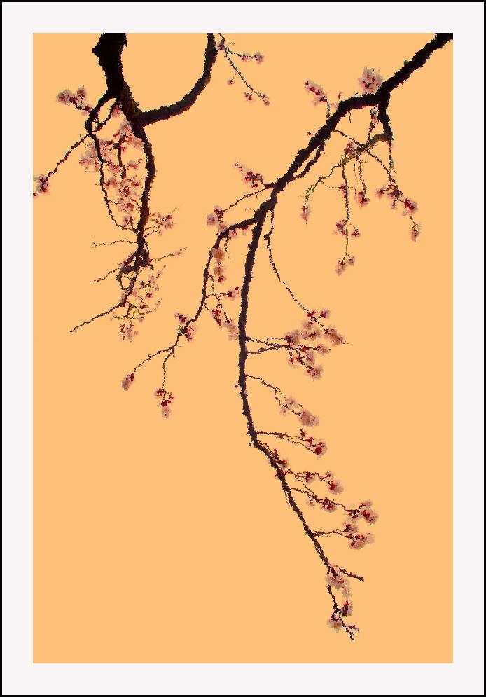 春天的一幅画