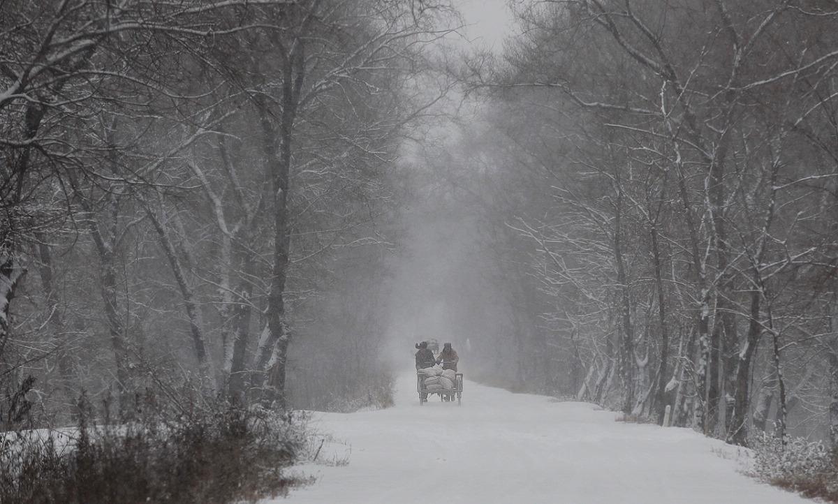 √风雪交加