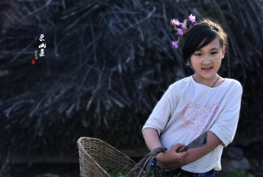 采山菜的小姑娘
